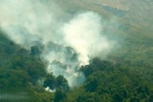 BMKG: Terdeteksi Titik Api di Lampung Tengah