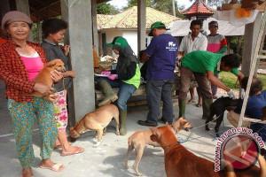 DTPHP Waykanan Vaksinasi Rabies Di Seluruh Kecamatan