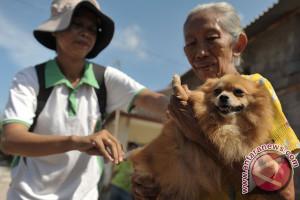 Menuju Harapan Indonesia Bebas Rabies