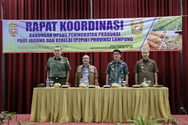 Lampung berupaya mewujudkan ketahanan pangan