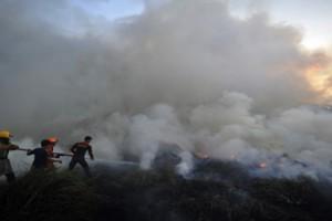 Lahan di jalan trans Sulawesi Majene terbakar