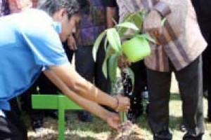 Kambuaya : Pembalakan dan Perusakan Hutan Patut Dihukum
