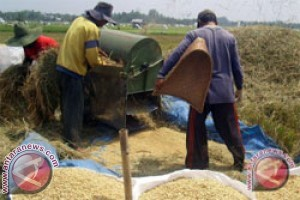 Catatan Akhir Tahun - Tantangan petani lokal hadapi MEA