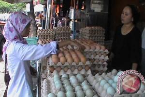 Harga telur ayam - cabai di Makassar naik