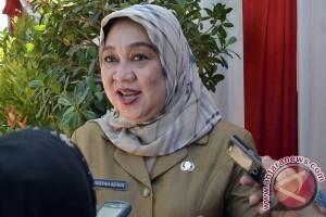 Penderita DBD Makassar 22 orang selama 2016