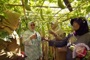 PKK Makassar diberikan pelatihan pengelolaan anggaran
