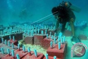 Kapolres transplantasi terumbu karang di Pulau Pangkep