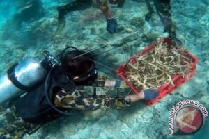 PT Mars-Unhas Sosialisasi Strategi Rehabilitasi Terumbu Karang
