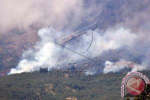 Puluhan hektare hutan di Majene terbakar