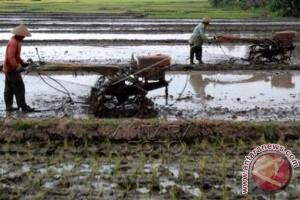 Sulbar Bantu 104 Unit Traktor Untuk Petani