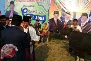 Pemprov Sulawesi Barat sembelih 27 ekor sapi