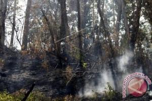 Warga-polisi padamkan kebakaran lahan di Majene