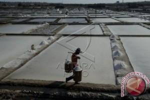 DKP Sulsel Fokus Pengembangan Usaha Garam Rakyat