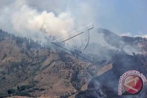 Dishut Sulsel identifikasi daerah rawan kebakaran hutan