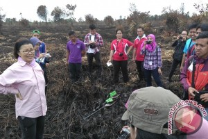 GAPKI : Perlu belajar ke Malaysia dalam tata kelola sawit