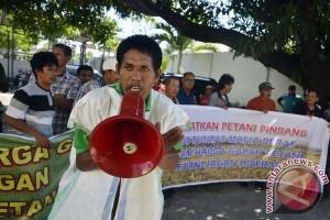 Petani Pinrang protes harga gabah turun