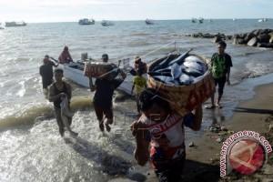ekspor bandeng sulawesi selatan capai 1.208 ton