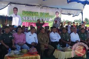 Menteri Pertanian panen raya di Bantaeng