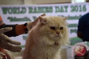 Disnakeswan Sulsel vaksin hewan peliharaan masyarakat