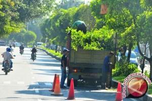 DKP Makassar pangkas pohon awal musim penghujan