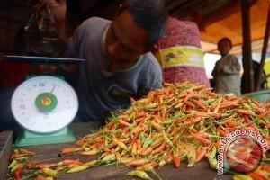 Harga Cabai Di Gorontalo Utara Rp110 Ribu/Kg