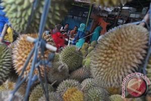 Pedagang Durian Mulai Bermunculan Di Mamuju