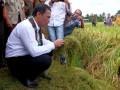 Menteri Pertanian Amran Sulaiman memperhatikan sekam padi saat panen raya padi di persawahan Kelurahan Sepe'e, Kabupaten Barru, Sulawesi Selatan, Senin (20/3). Kabupaten Barru memproduksi gabah sebanyak 109,287 ton dengan luas persawahan 14,818 hektar. Pemerintah menargetkan untuk wilayah Sulawesi Selatan dan Sulawesi Barat penyerapan hingga 400 ribu ton setara beras hingga akhir 2017. ANTARA FOTO/Sahrul Manda Tikupadang/kye/17