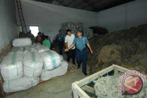 Danlantamal VI Tinjau Pabrik Pengepakan Rumput Laut