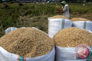 Gubernur: petani berhak memilih jual produksinya
