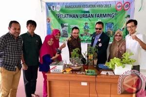 "BPP PISPI-PB IDI Kembangkan ""Urban Farming"""