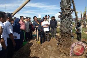 Gubernur Tanam Pohon Lontara Di Perintis-Sutami