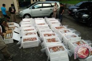 BKIPM Makassar Gagalkan Pengiriman Kepiting Rajungan