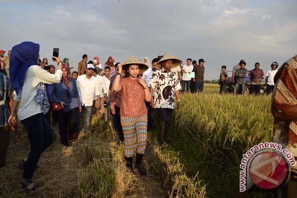 Legislator DPR PAN Serap Aspirasi Petani Gowa