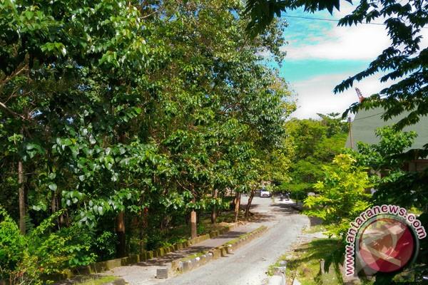 Kebun Raya Jompie Pare-Pare Mampu Turunkan Emisi Karbon
