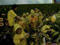 Anak-anak bermain di wahana kebun bunga yang ada di Nestle Dancow Explore Your World di Mall Panakukkang, Makassar, Sulawesi Selatan, Sabtu (07/10). Kegiatan yang diselenggarakan pada 7-8 Oktober tersebut menghadirkan wahana edukasi untuk mendorong kepercayaan diri orang tua dan mendukung si kecil bereksplorasi dengan mengusung tema \