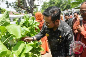 Gubernur Tanam Selada Bersama Siswa SMA 10 Makassar