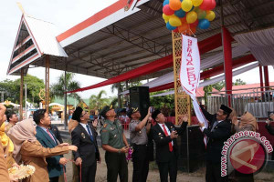 Wabup Bulukumba Launching Duta Remaja Peduli Anemia
