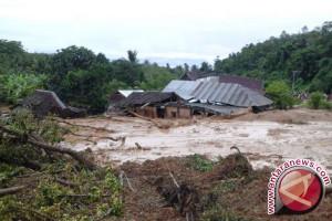Banjir Hambat Produksi Kakao Petani Luwu Utara