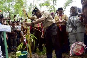 Dishut Sulsel Tanam 13,4 Ribu Rumpun Bambu