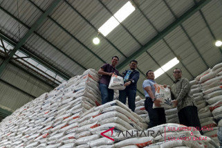 south sulawesi sets rice production target higher in 2018