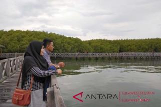 Hutan bakau Tongke-Tongke andalan wisata Sulsel