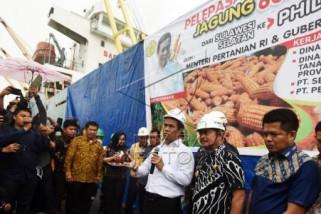 Mentan lepas ekspor jagung Sulsel ke Filipina