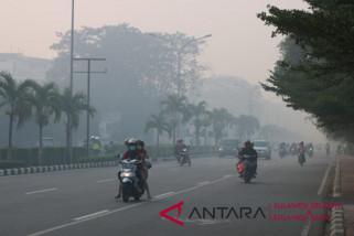 Karhutla di Kalimantan Selatan capai 1.084 hektare