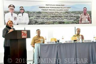 BPDP-KS remajakan 5.000 hektare sawit di Sulbar