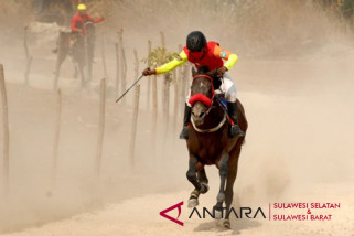 Pacuan kuda tradisional