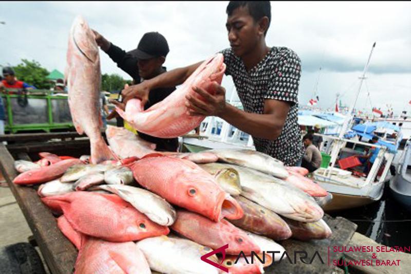 Harga ikan naik