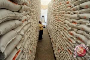 Bolmong Targetkan Produksi Beras 99 Ribu Ton