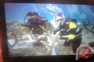 TNI AL tanam terumbu karang di Bunaken