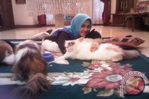 Profil - Huraira `Menghajikan` Orang Tua berkat Kucing (Bagian I)