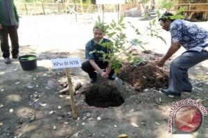 BI NTB Bantu Kelompok Ternak di Sumbawa